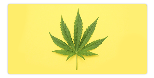 Can CBD Help Muscle Aches and Pains?